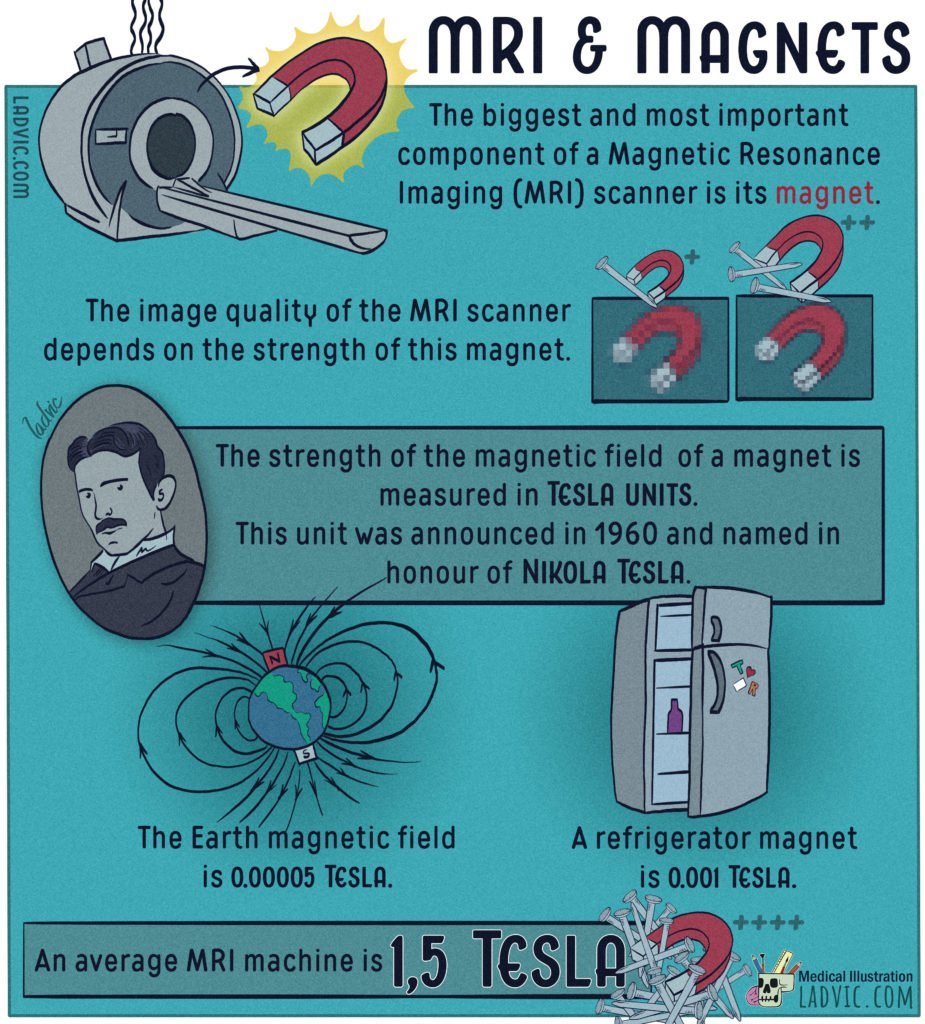 MRI & Magnets.