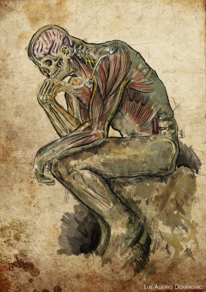 "The anatomy thinker. Cover used for Journal ""Revista Argentina de Neurocirugía"""