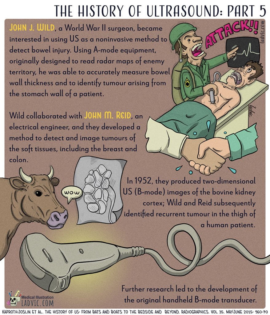 The History of Ultrasound. Part 5 out of a 5 part series infographics.
